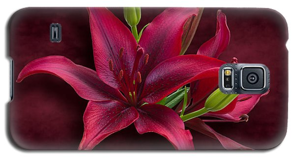 Red Lilies Galaxy S5 Case