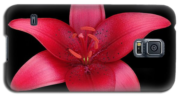 Galaxy S5 Case featuring the photograph Red Lily by Judy Whitton