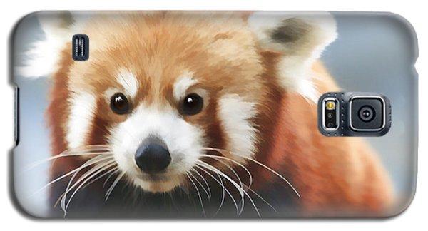 Red Panda Staring Galaxy S5 Case