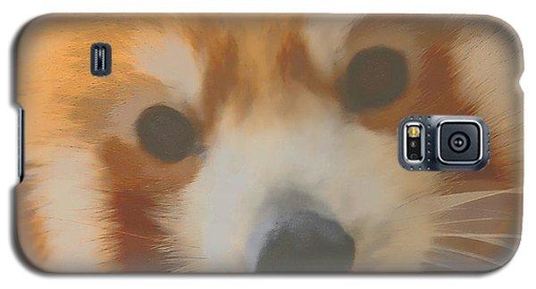 Red Panda Up Close Galaxy S5 Case