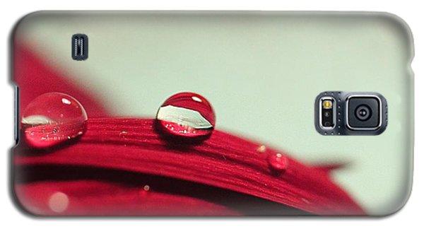 Red Petals Galaxy S5 Case