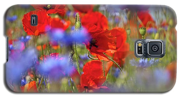 Red Poppies In The Maedow Galaxy S5 Case by Heiko Koehrer-Wagner