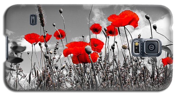 Red Poppies On Black And White Background Galaxy S5 Case by Dany Lison