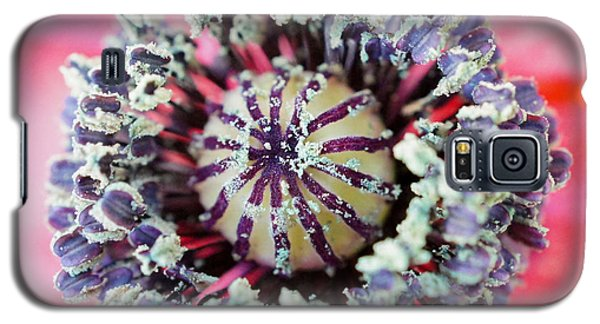 Galaxy S5 Case featuring the photograph Red Poppy Squared by TK Goforth