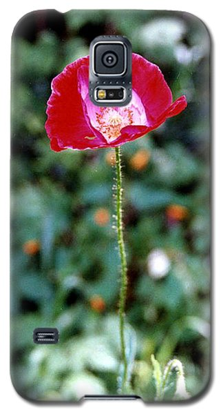Red Poppy  Galaxy S5 Case