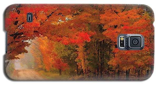 Red Red Autumn Galaxy S5 Case