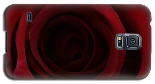 Galaxy S5 Case featuring the photograph Red Red Rose by Keith Hawley