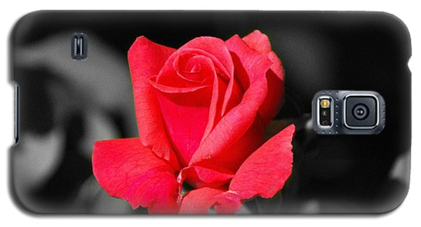 Red Red Rose - Sc Galaxy S5 Case
