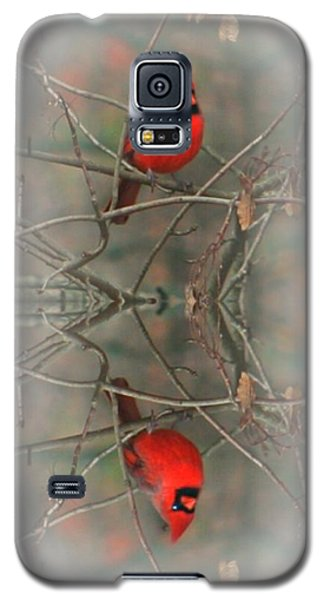 Red Reflection Galaxy S5 Case by Barbara S Nickerson