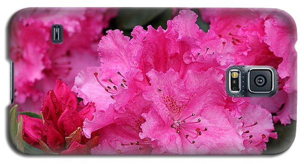 Red Rhododendrons Galaxy S5 Case