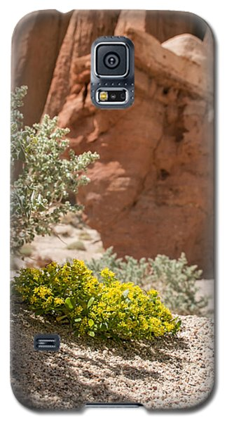 Galaxy S5 Case featuring the photograph Red Rock Blooming by Jan Davies
