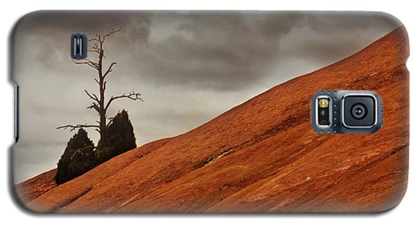 Galaxy S5 Case featuring the photograph Red Rock by Dana DiPasquale