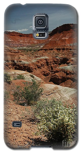 801a Red Rock Formations Galaxy S5 Case