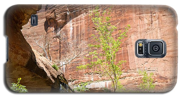 Red Rock With Waterfall Galaxy S5 Case