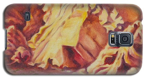 Red Rocks Galaxy S5 Case by Michele Myers