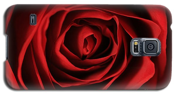 Red Rose 2 Galaxy S5 Case