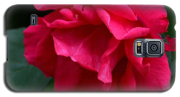 Red Rose 2013 Galaxy S5 Case by Maria Urso
