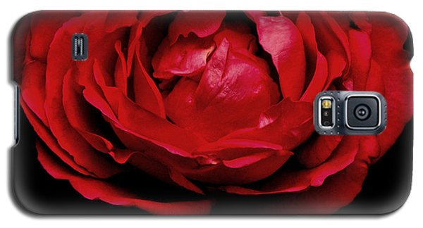 Galaxy S5 Case featuring the photograph Red Rose by Charlotte Schafer