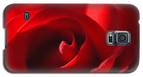 Galaxy S5 Case featuring the photograph Red Rose by Tikvah's Hope