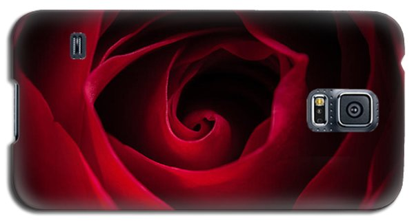 Red Rose Square Galaxy S5 Case by Matt Malloy