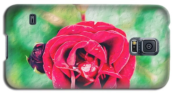 Galaxy S5 Case featuring the photograph Red Rose by Yew Kwang