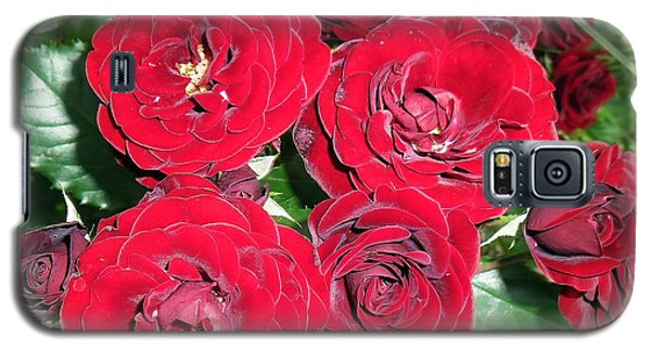 Galaxy S5 Case featuring the photograph Red Roses by Vesna Martinjak