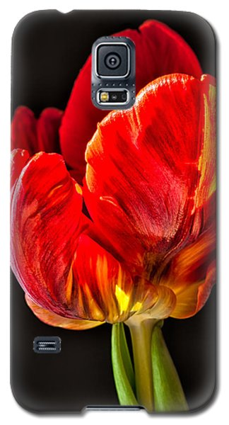 Red Ruffles Galaxy S5 Case by Joan Herwig