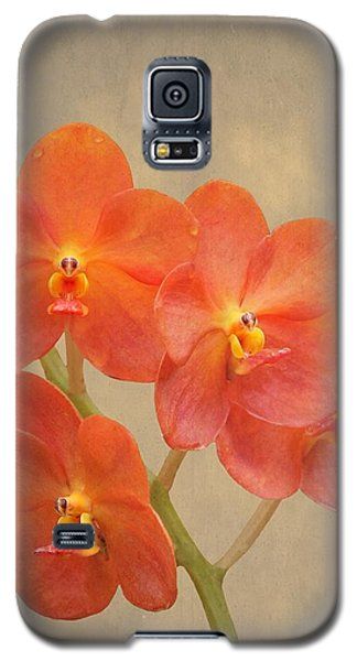Red Scarlet Orchid On Grunge Galaxy S5 Case