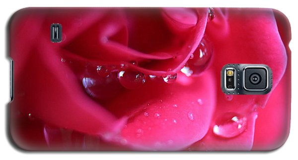 Red Scented Rose Galaxy S5 Case by Ester  Rogers