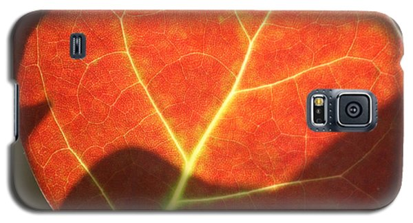 Galaxy S5 Case featuring the photograph Red Sea Grape Leaf by Peg Toliver