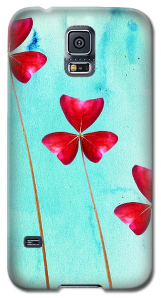 Red Shamrock Trio Galaxy S5 Case