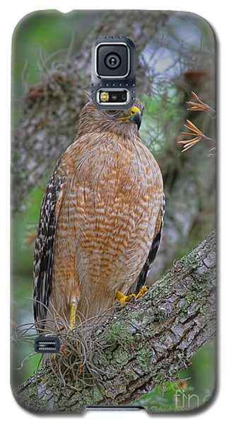 Red Shoulder Series 1 Galaxy S5 Case