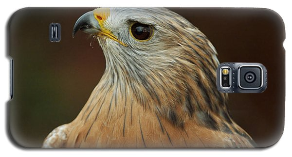 Galaxy S5 Case featuring the photograph Red-shouldered Hawk by Doug Herr
