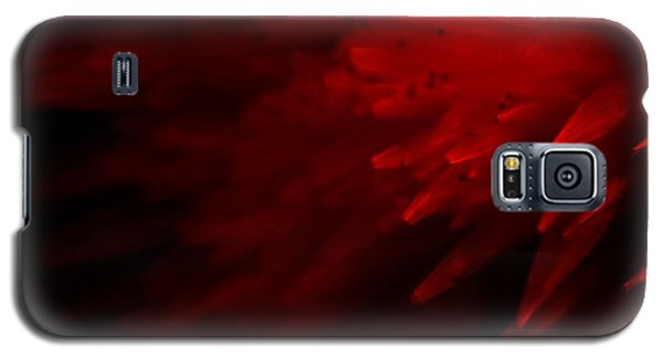 Galaxy S5 Case featuring the photograph Red Skies by Dazzle Zazz