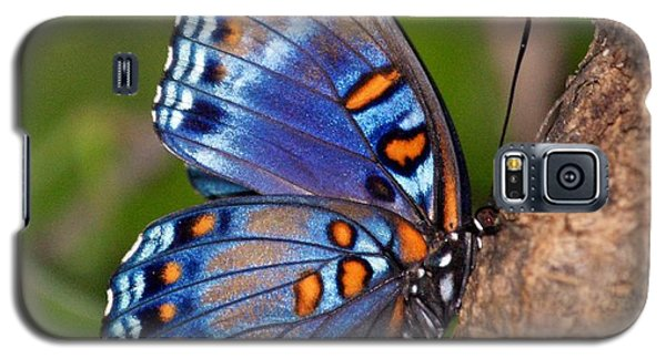 Red Spotted Purple Butterfly Galaxy S5 Case