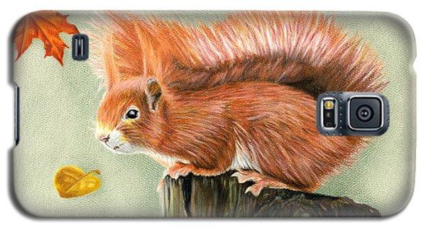 Red Squirrel In Autumn Galaxy S5 Case by Sarah Batalka