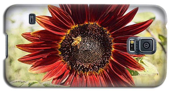 Red Sunflower And Bee Galaxy S5 Case by Kerri Mortenson