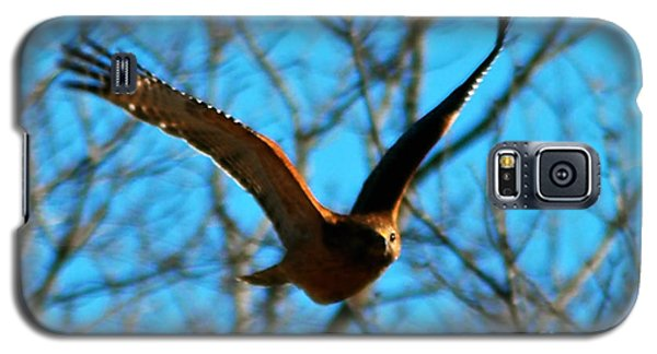 Galaxy S5 Case featuring the photograph Red Tail Hawk In Flight by Peggy Franz