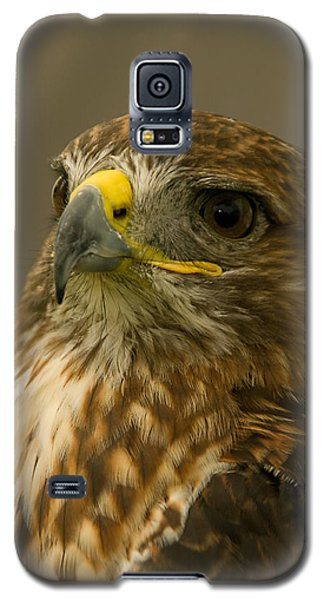 I'm So Proud - Red Tailed Hawk Galaxy S5 Case