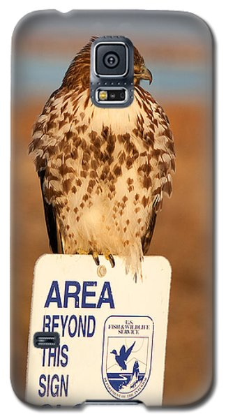 Red Tailed Hawk Lower Klamath National Wildlife Refuge Northern California Galaxy S5 Case