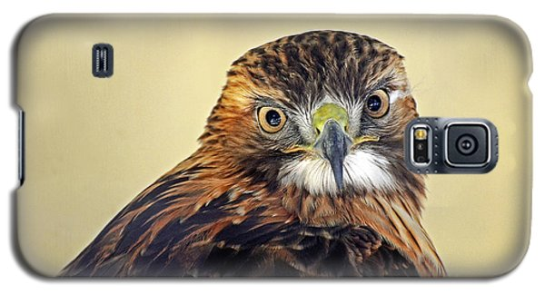 Red Tailed Hawk Portrait #2 Galaxy S5 Case