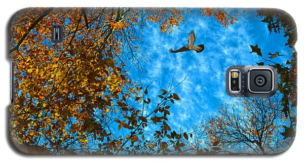 Red-tailed Hawk Galaxy S5 Case by Sandi OReilly