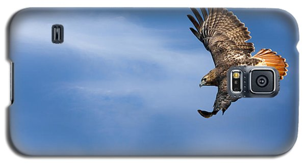 Red Tailed Hawk Soaring Galaxy S5 Case