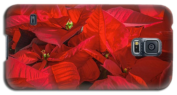 Red Galaxy S5 Case by Tamara Becker