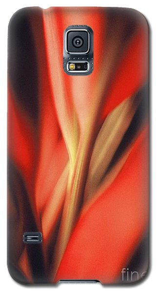 Red Ti Galaxy S5 Case