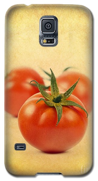 Galaxy S5 Case featuring the photograph Red Tomato by Mohamed Elkhamisy
