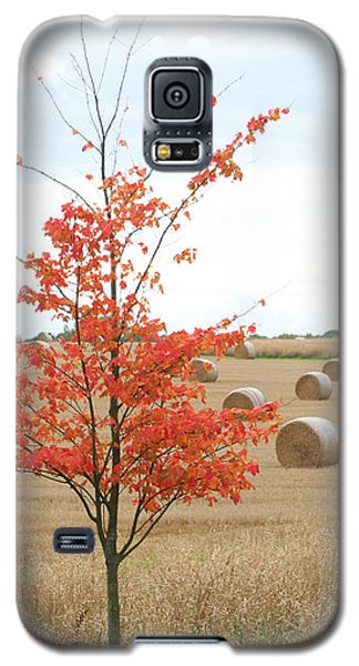 Galaxy S5 Case featuring the photograph Red Tree by Elizabeth Lock