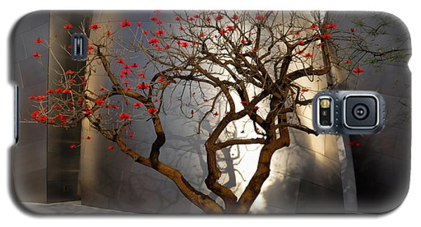 Galaxy S5 Case featuring the photograph Red Tree  by Gandz Photography