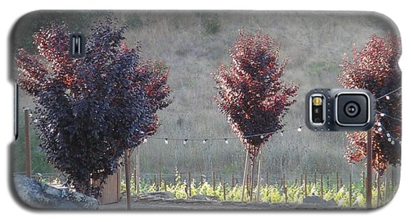 Galaxy S5 Case featuring the photograph Red Tree's by Shawn Marlow