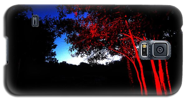 Red Trees Galaxy S5 Case